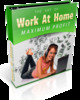 Thumbnail The Art Of WORK AT HOME Maximum Profits